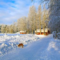 Lapland 3 Joop Lankhaar