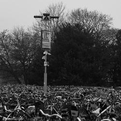 Zee van fietsen