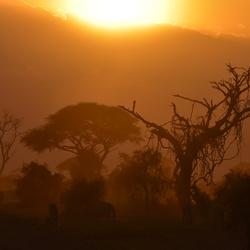 Zonsondergang in Amboseli NP Kenia