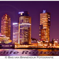Citylife Rotterdam - Kop van Zuid, Port of Rotterdam