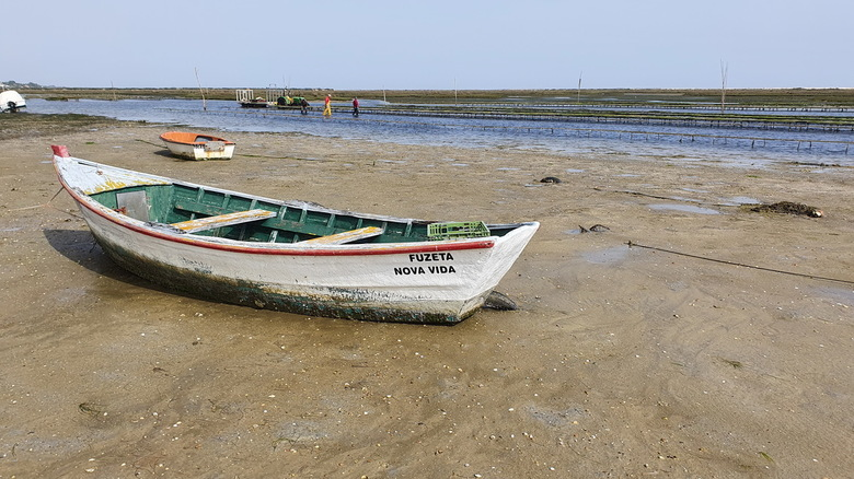 Algarve - Vissersbootje aan de Algarve, Portugal