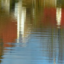 DSC_8557  Reflectie in het water.