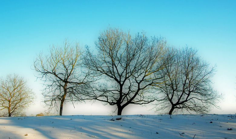 Wintertijd - Helemaal tegen mijn gewoonte in wéér een upload van mij... Eigenlijk omdat ik nu naar buiten kijk en alles wit is. En grijs. Dat deed me