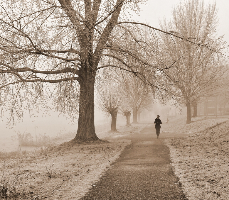Running on a cold and misty morning - Running on a cold and misty winter morning