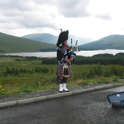 Piper in Glencoe