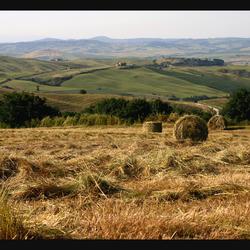 Magnificenza di Toscana
