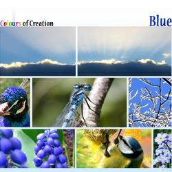 COC: Blue