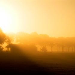 De vroege ochtend