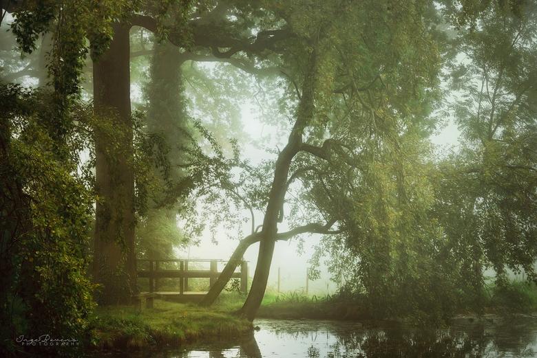 Garden of Eden. -
