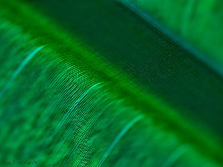 Lijntjes . . .  - Weer een abstract beeld vandaag…...eenvoudig, met erg veel lijntjes.....<br /> <br /> <br /> <br /> Alle Zoomers die hebben gere