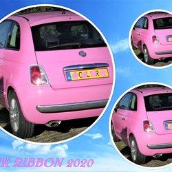 collage  OKT  PINK RIBBON  Fiat 500  Oranjepolder   6  juni 2020