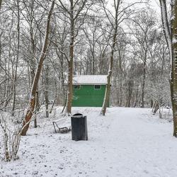 Sneeuw in het park