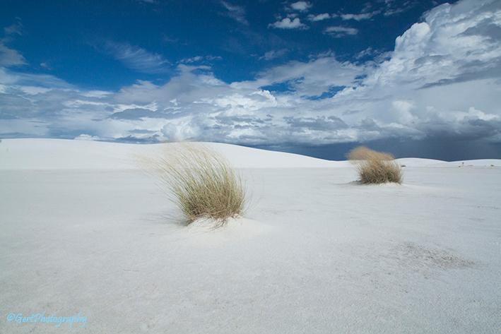 White Sands, New Mexico VS - White Sands bestaat niet uit wit zand maar uit grofkorrelig gips. Een zonnebril is verplicht te dragen bij de ingang van