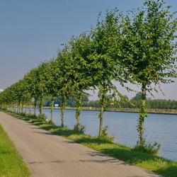 Amsterdam Rijnkanaal en omgeving 406