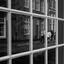 Dordrecht spiegelbeeld