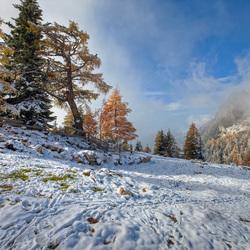 winters 1