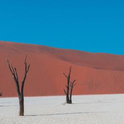 death vlei namibie