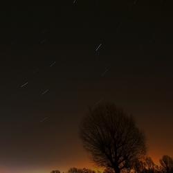 Ochtend sterren