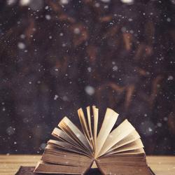 Snow Book