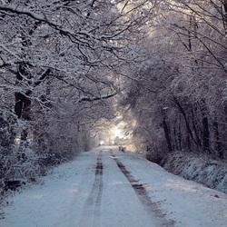 Winters landweggetje