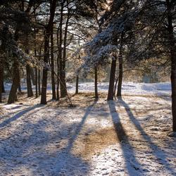 Sneeuw tegenlicht