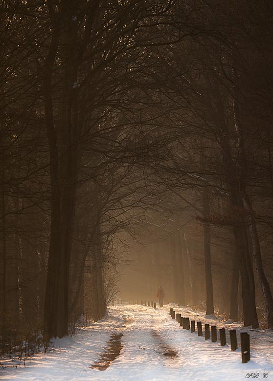 Lonesome - Even wat anders van mij. Een laatste koud plaatje voordat we naar het voorjaar kunnen ....<br /> Iedereen bedankt voor de reacties op mijn