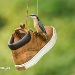 schoenmaat te groot ?