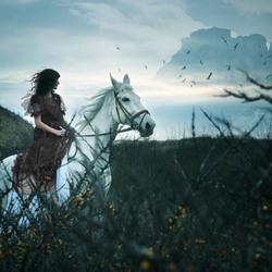 *fairy tale* 1