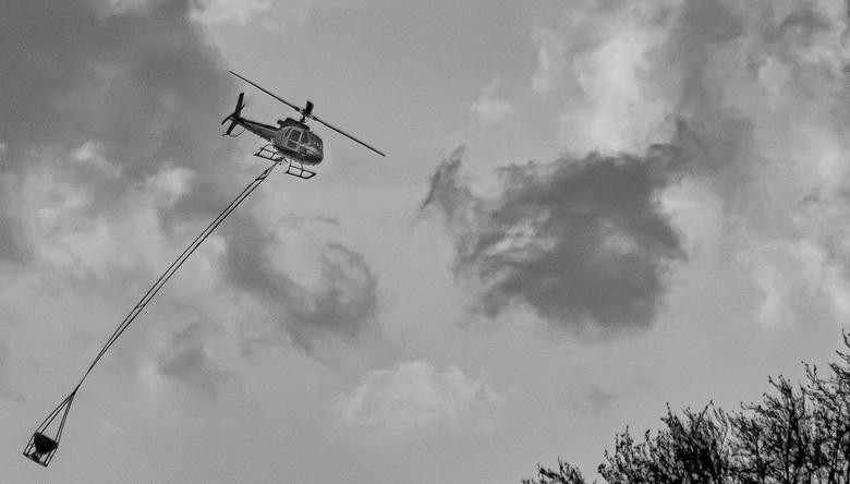 """Helikopter-schelpengruis - Ondanks dat de kwaliteit van de foto niet """"je van het"""" is, plaats ik de foto om het verhaal. Gespot boven het nat"""