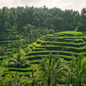 Bali in Indonesie