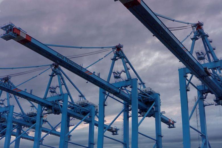Kranen APM-terminal Maasvlakte 2