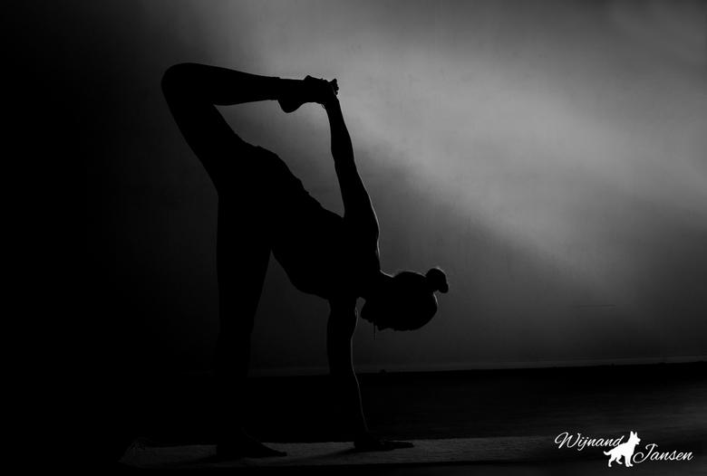 Yoga - De yogatechniek, hoe deze ook mag zijn, is een discipline, waardoor de mens tracht tot de staat van yoga te komen.
