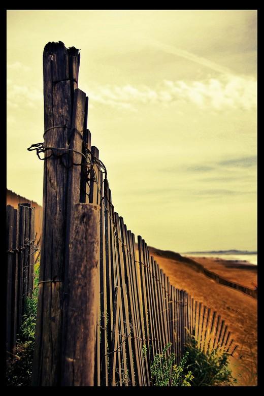 There stood the Fence - gewoon een geweven houten hekwerk in Frankrijk dat een geweldige uitstraling kan hebben. Lucht strak en gedramatiseerd, hekwer