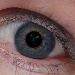 Cat(ch) eyes
