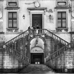 Udine 8