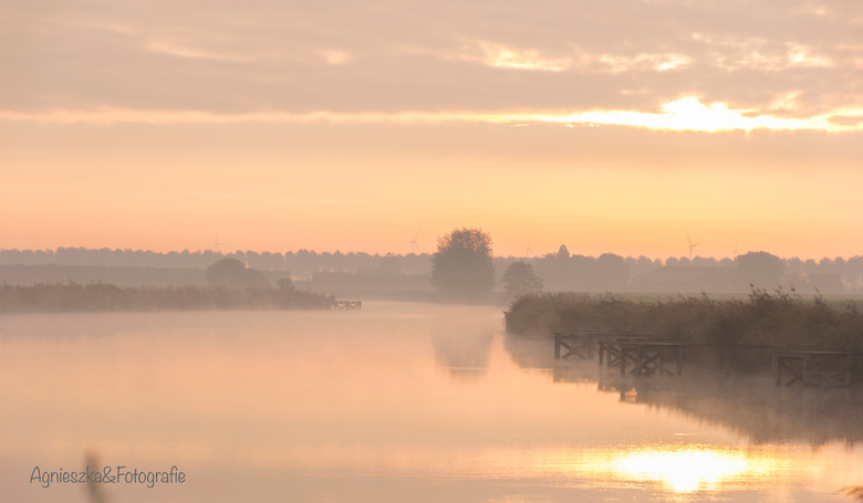 Water, spiegeling, zonsopkomst, mist, rustig platje. -