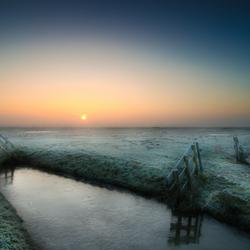 Bevroren polders
