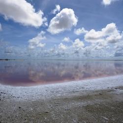 Salt-lake Bonaire