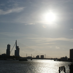 Rotterdam met tegen licht