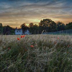 kasteel Vliermaal op een zomeravond