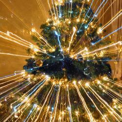 Onze kerstboom voor 2011