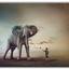 Feeding the Elephant