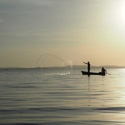 Visser op Victorialake - Uganda 2016