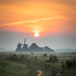 Wijns, Friesland