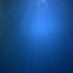 Lichtstralen in het water