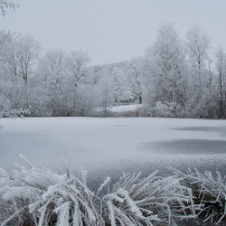 Bevroren stilte
