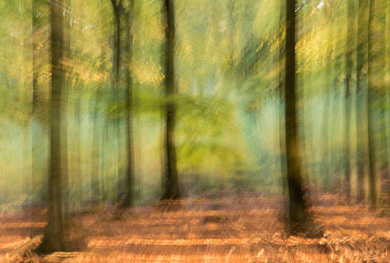 Ingezogen  - Een experimentje met de lens in en uit te zoomen leverde dit impressionistisch plaatje. Vind ik wel leuk om het af en toe uit te proberen