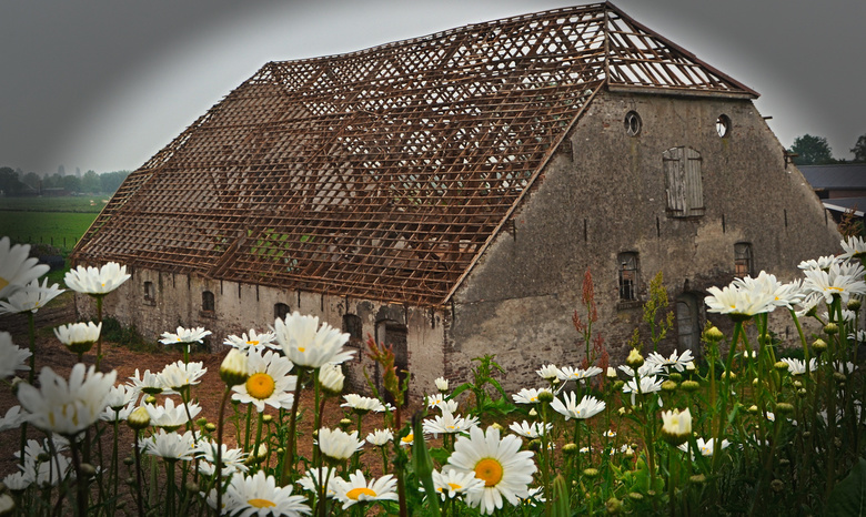 Als muren konden praten - Bij ons aan de dijk...<br /> Daar staat een oude boerderij als de muren eens konden praten. Old Macdonald had a fram.