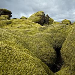 IJsland 44