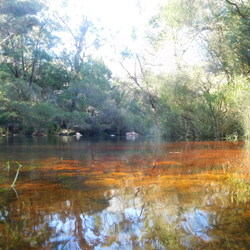 The red coloured creek